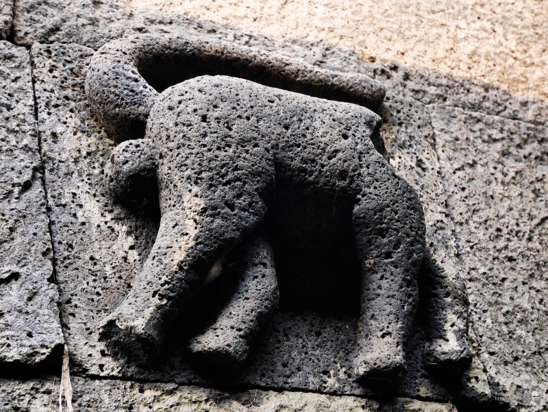 On both sides of the steps, there are two carved animals whose heads have disintegrated but the tails indicate that they may have been monkeys